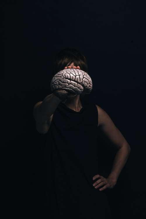 Holding Model Brain Photo