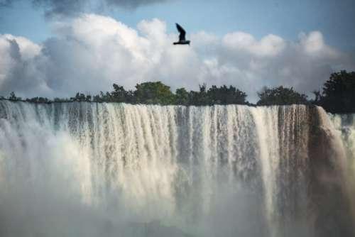 Rushing Water Cascading Over Niagara Falls Photo