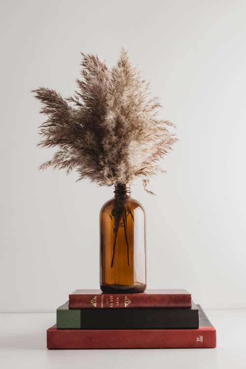 Stalks Of Grass In Brown Glass Bottle Atop Antique Books Photo
