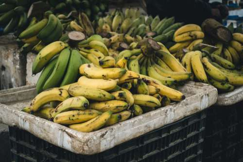 Crate with ripe bananas