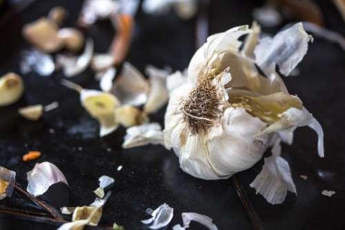 Clove of garlic on kitchen counter