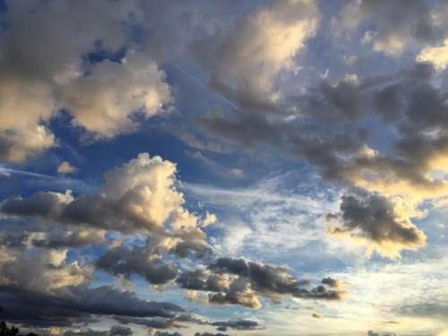 Contrasting Sky