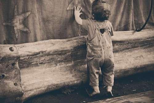 Cute Kid Exploring Free Photo