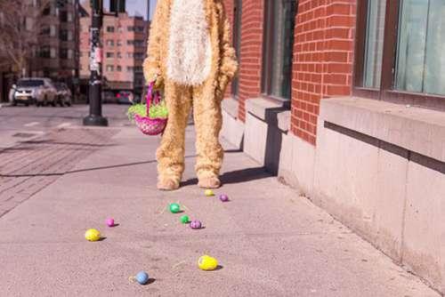 Bunny Suit Free Photo