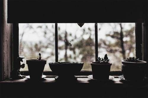 Rainy Day Free Photo