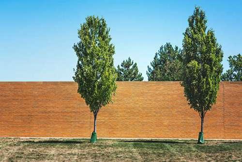 Brickwall in Park Free Photo