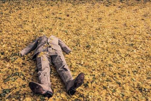 Man Falling on Leaves Free Photo