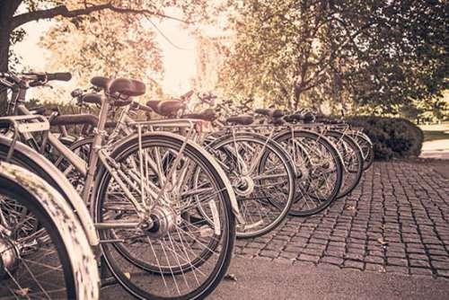 Row of Parked Bikes Free Photo