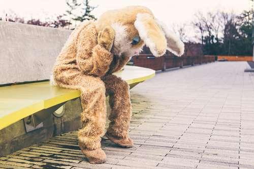 Sad Bunny Costume Free Photo