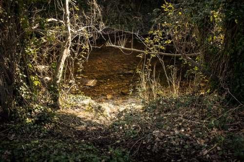 Calm River at Night