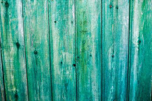 Green Wood Fence