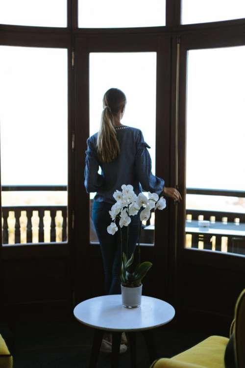 Orchid woman window
