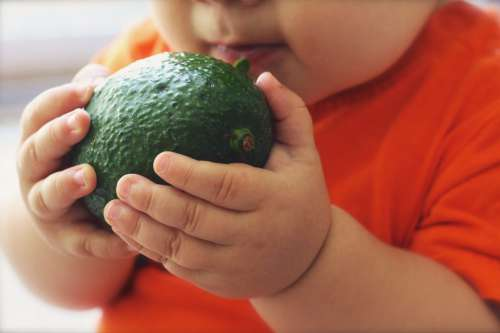 Child with Avocado