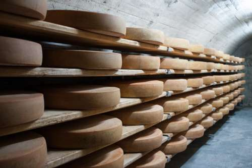 Cheese in Storage