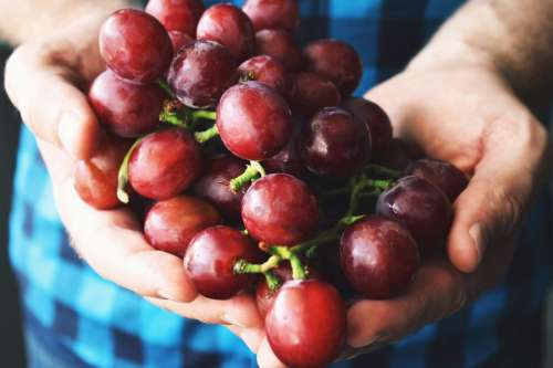 H&s Holding Grapes