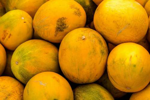 Yellow Melons
