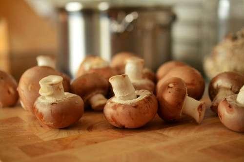 Mushrooms in Kitchen