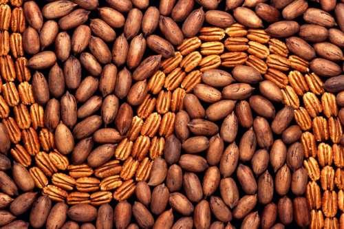 Peanuts Pattern