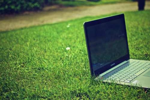 Laptop Computer on Grass