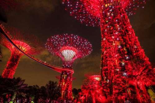 Singapore Garden Lights