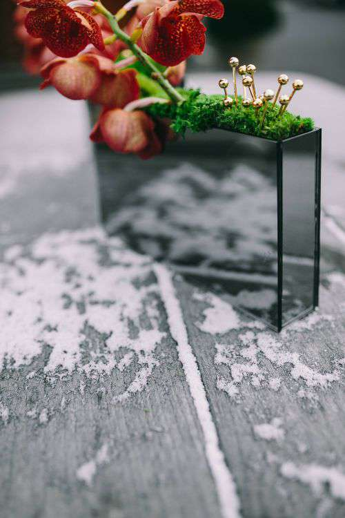 Miniature ornamental plants in rectangular boxes