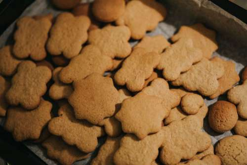 Homemade gingerbread cookies
