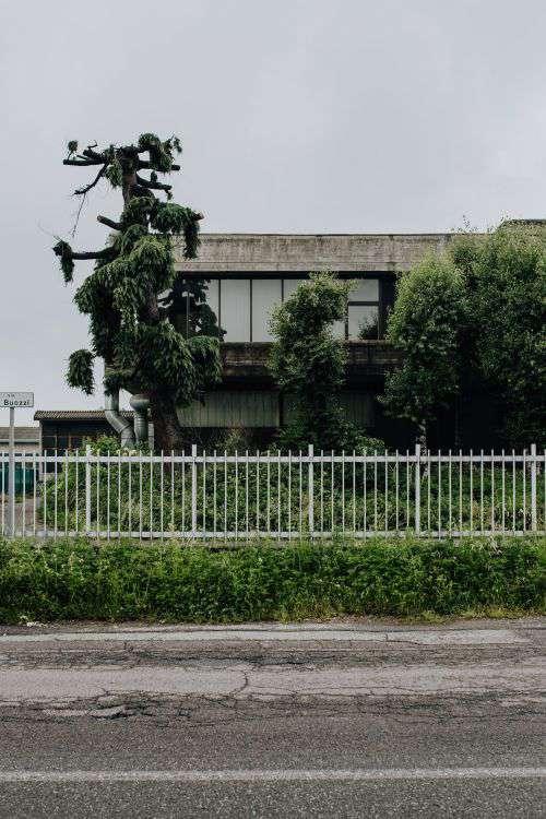 Municipal greenery