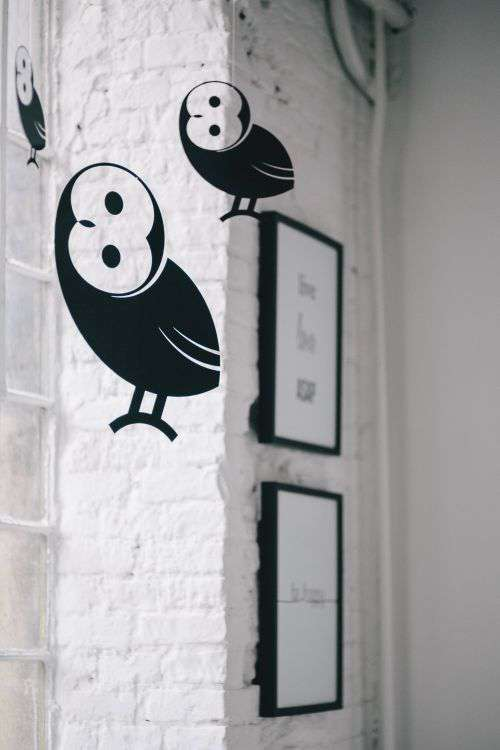 Little black plastic owls hanging from a ceiling