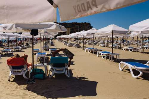 Umbrellas and lounge chairs on Sunny Beach, Bulgaria