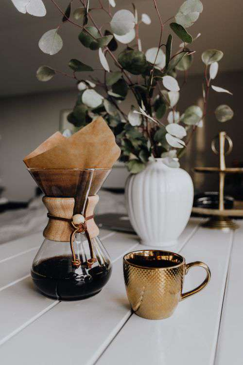 Chemex Coffee Maker with Gold Cup