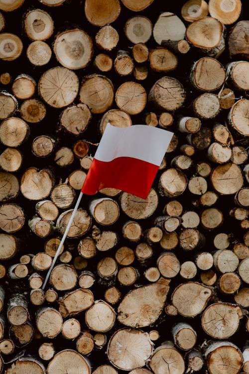 Flag of Poland - Polska Flaga
