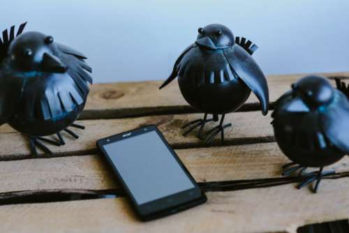 Little black plastic birds with a smartphone on a shelf