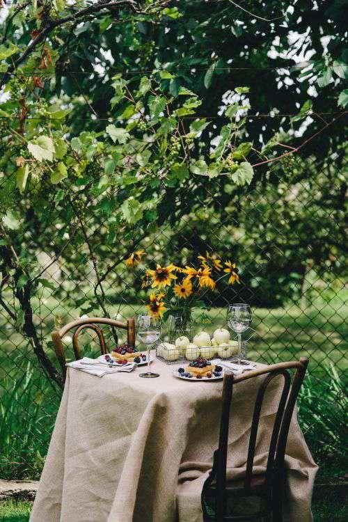 Healthy lunch in the garden