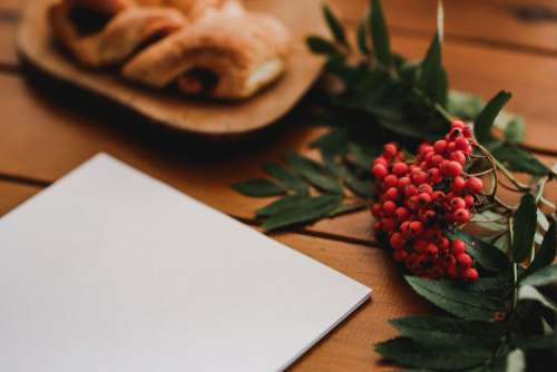 Red rowan fruit with a coffee and a white sheet of paper