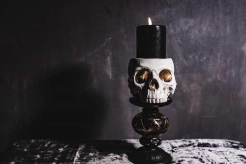 Halloween Skulls Decorations