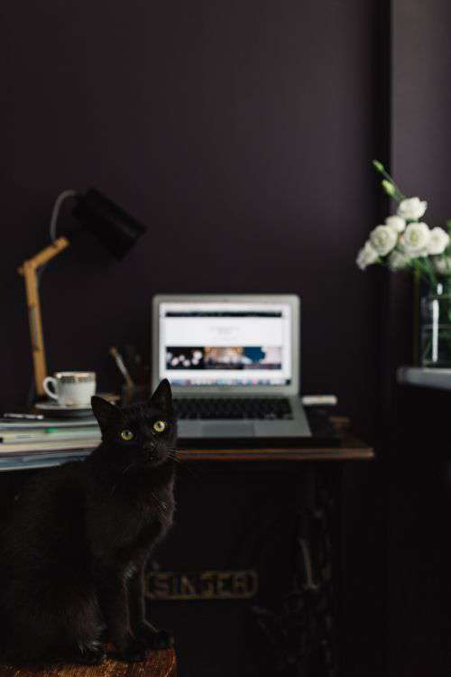 Contemporary home office idea with dark walls