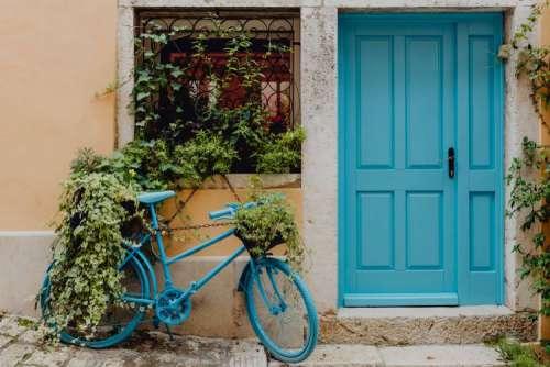 Visit the small mediterranean town Rovinj, Croatia