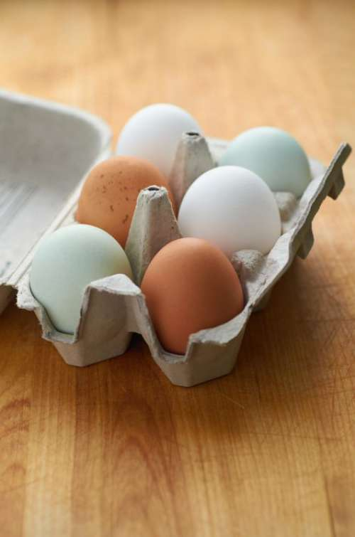 Fresh Half Dozen Eggs Free Photo