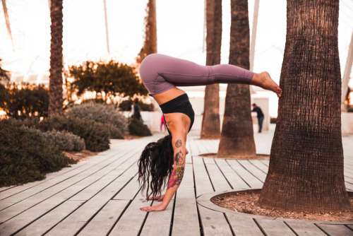 Woman Yoga Tree Free Photo