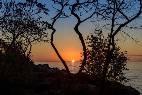 Water Sunset Through Trees Free Photo