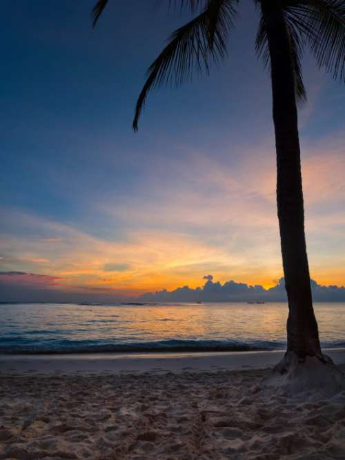 Tropical Beach Sunset Free Photo