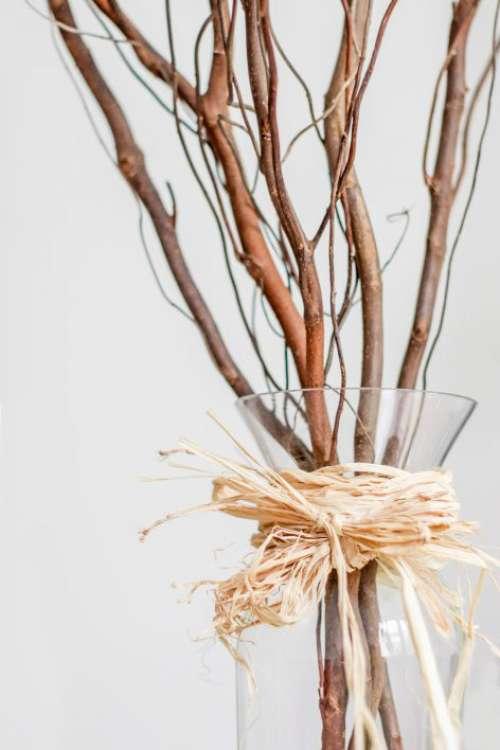 Minimal Glass Vase Free Photo