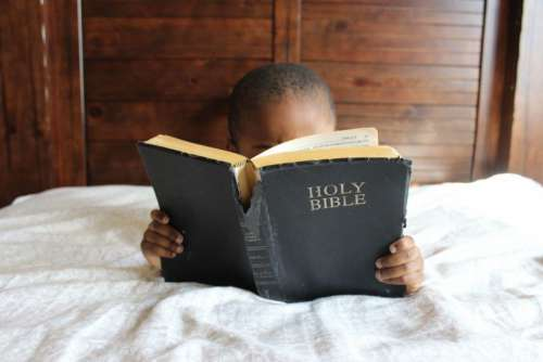Boy Reading Bible Free Photo