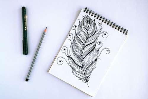 Flower Sketch Pen Pencil Free Photo