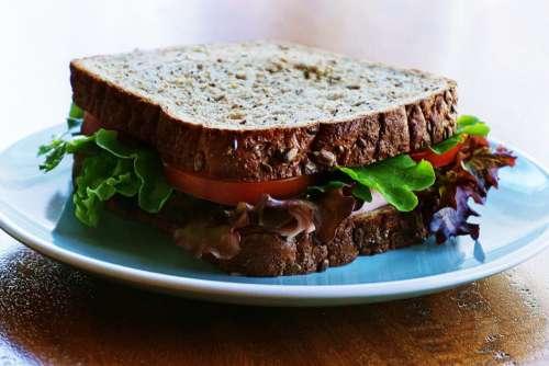 Healthy Sandwich Free Photo