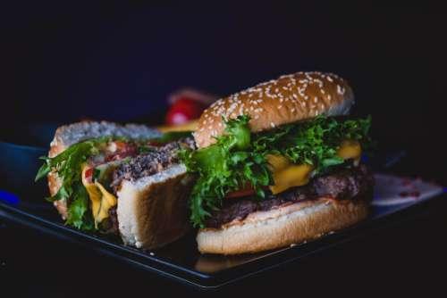 Fresh Cooked Hamburger Free Photo