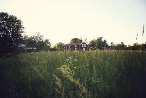 Farmhouse Summer Field Free Photo