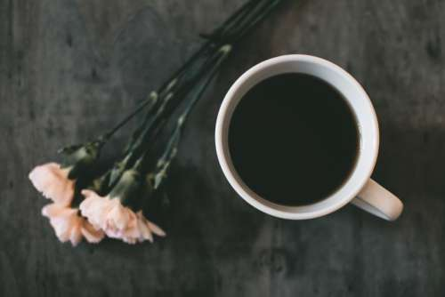 Black Coffee White Flowers Free Photo