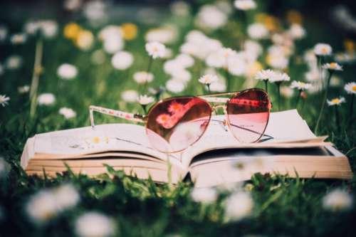 Open Book Sunglasses Free Photo