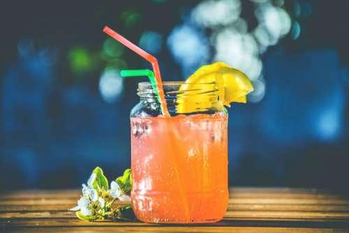Orange Cocktail Drink Free Photo